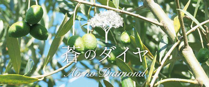 蒼のダイヤ<br />ブランドウェブサイト